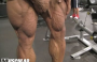 Sergio Oliva Jr. Trains Quads 9 Days Out  2018 Mr. Olympia