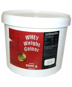 Activevites Whey weight gainer (5000 грамм)