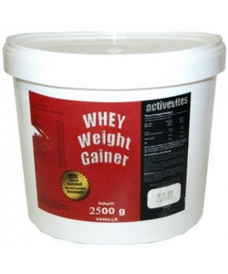 Activevites Whey weight gainer (2500 грамм)