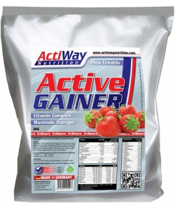 ActiWay Nutrition Active Gainer (3000 грамм)