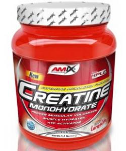 Amix Creatine Monohydrate (300 грамм)