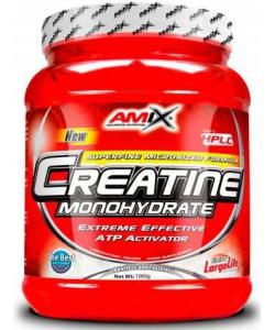 Amix Creatine Monohydrate (1000 грамм)