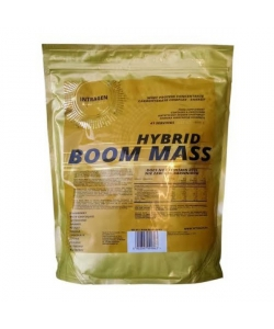 Intragen Hybrid Boom Mass Gold Series (1000 грамм, 16 порций)