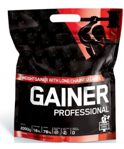 Ironmaxx Professional Gainer (2000 грамм, 66 порций)