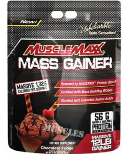 MuscleMaxx Mass Gainer (5440 грамм, 32 порции)