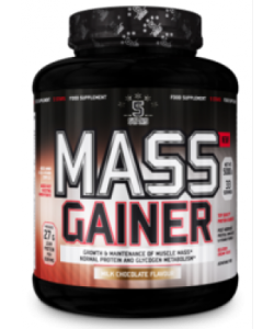Nutriversum Mass Gainer (1000 грамм, 6 порций)