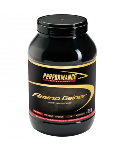 Performance Amino Gainer (1500 грамм)
