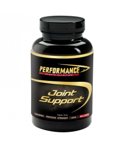 Performance Joint Support (90 капсул, 30 порций)