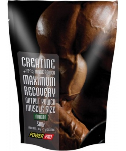Power Pro Creatine (500 грамм)