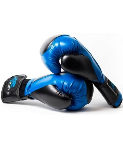 PowerPlay Боксерские перчатки  3020 Platinum Blue