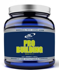Pro Nutrition Pro Building BCAA 4:1:1 (500 грамм, 125 порций)