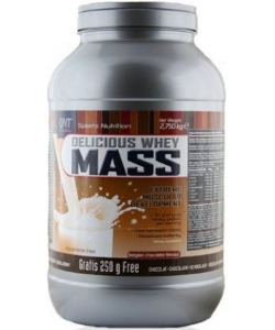 QNT Delicious Whey Mass (2750 грамм, 14 порций)