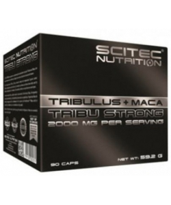 Scitec Nutrition Tribu Strong + maca (90 капсул, 30 порций)